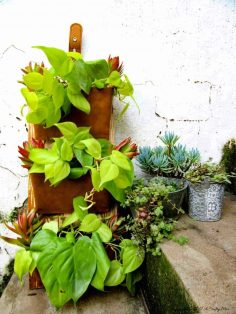 Use Old DVD Cases to Make a Vertical Garden
