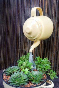 A Crazy Floating Teapot Succulent Planter Tutorial